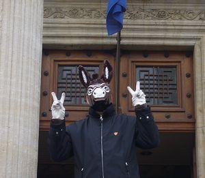 The Masked Donkey of Catalonia