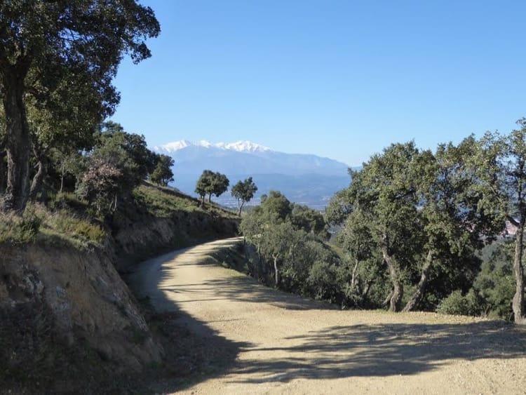 Walk: Sentier Botanique, Montesquieu