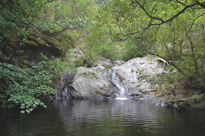 from Céret Rock pool Taulis