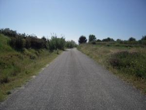 cycle_path