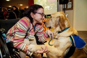 Handi'chiens change lives