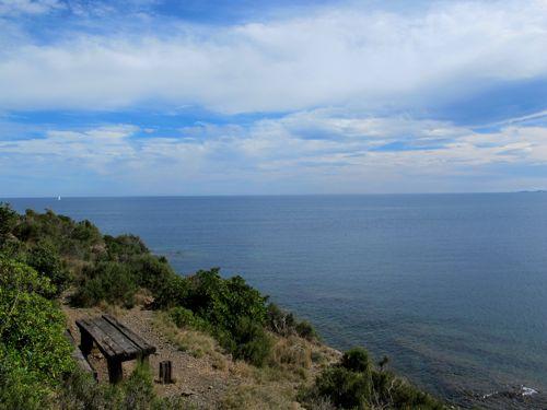 Cap Béar cliffs