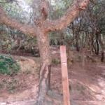 Walk the Region – LE FORT DE BELLEGARDE CIRCULAR