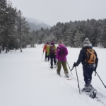 Snowshoe walks in Pyrenees