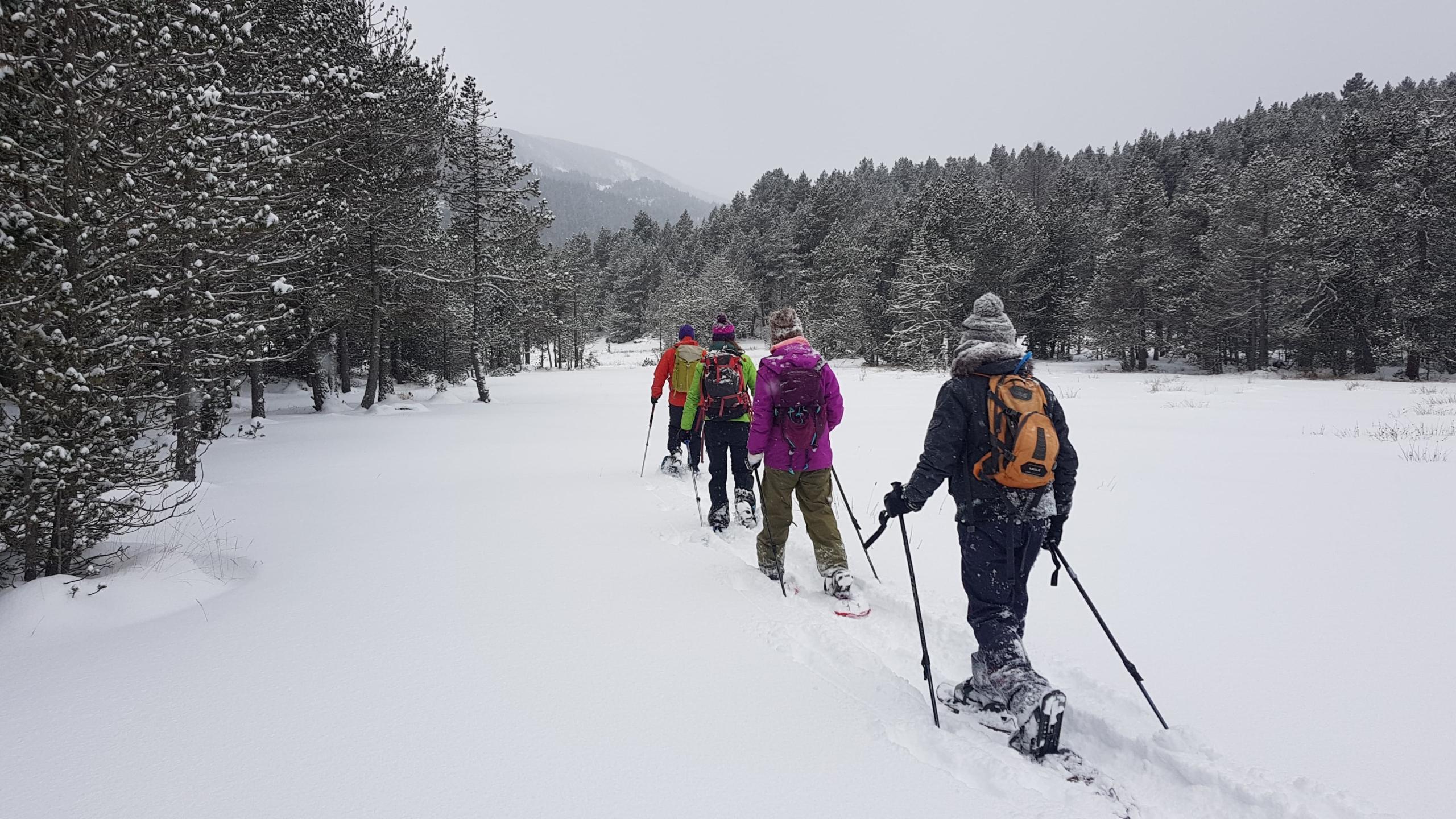 Snowshoe walks in Pyrenees