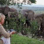 Françoise with the herd visiting at her home at Thula Thula game reserve