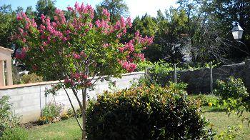 gardening in the pyrenees orientales