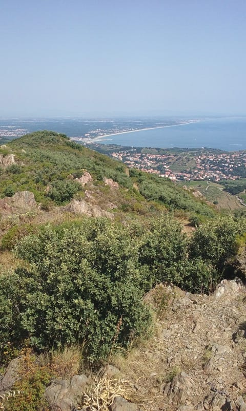 View of coast from Puig de les Daines