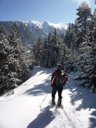 Snowshoe walk: Vallee de Planès, Haute Cerdagne
