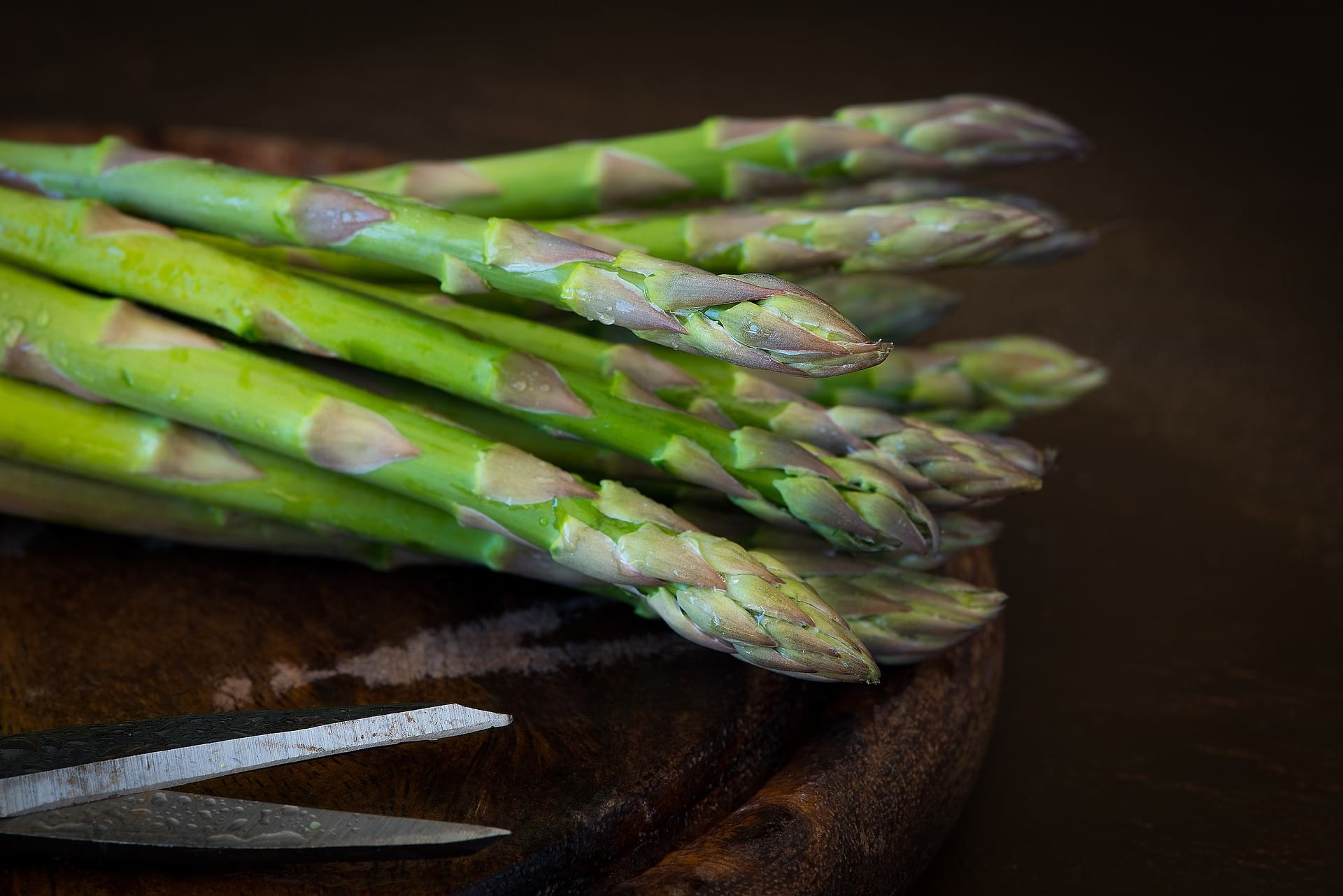 food for thought asparagus