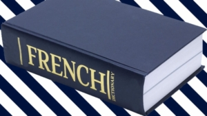 New words in French dictionary