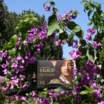 Hyacinthe Rigaud Museum, Perpignan