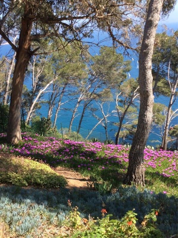 Girona's Botanic Gardens at Cap Roig, Calella de Palafrugell