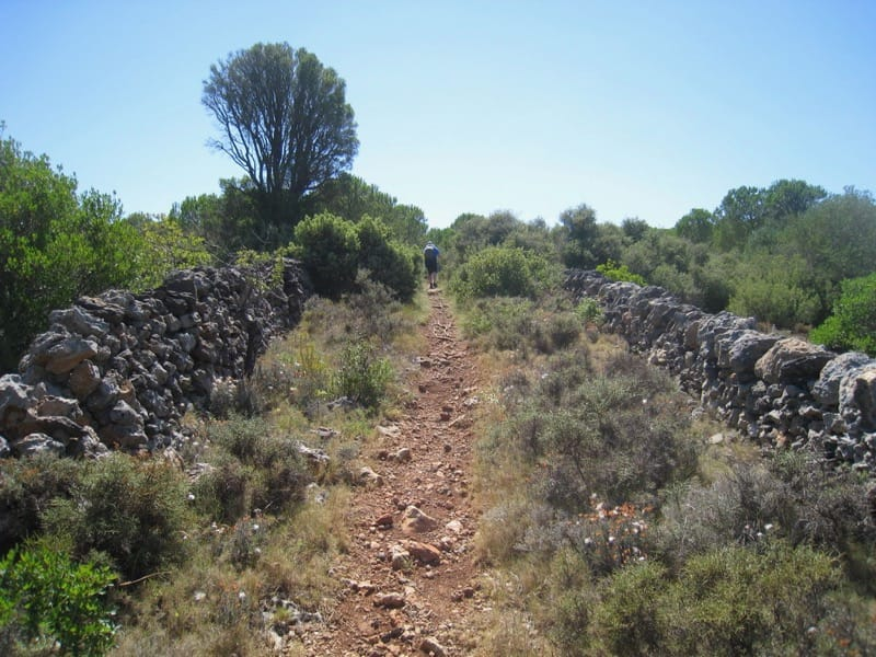Walk: La garrigue de Caves walled path en route